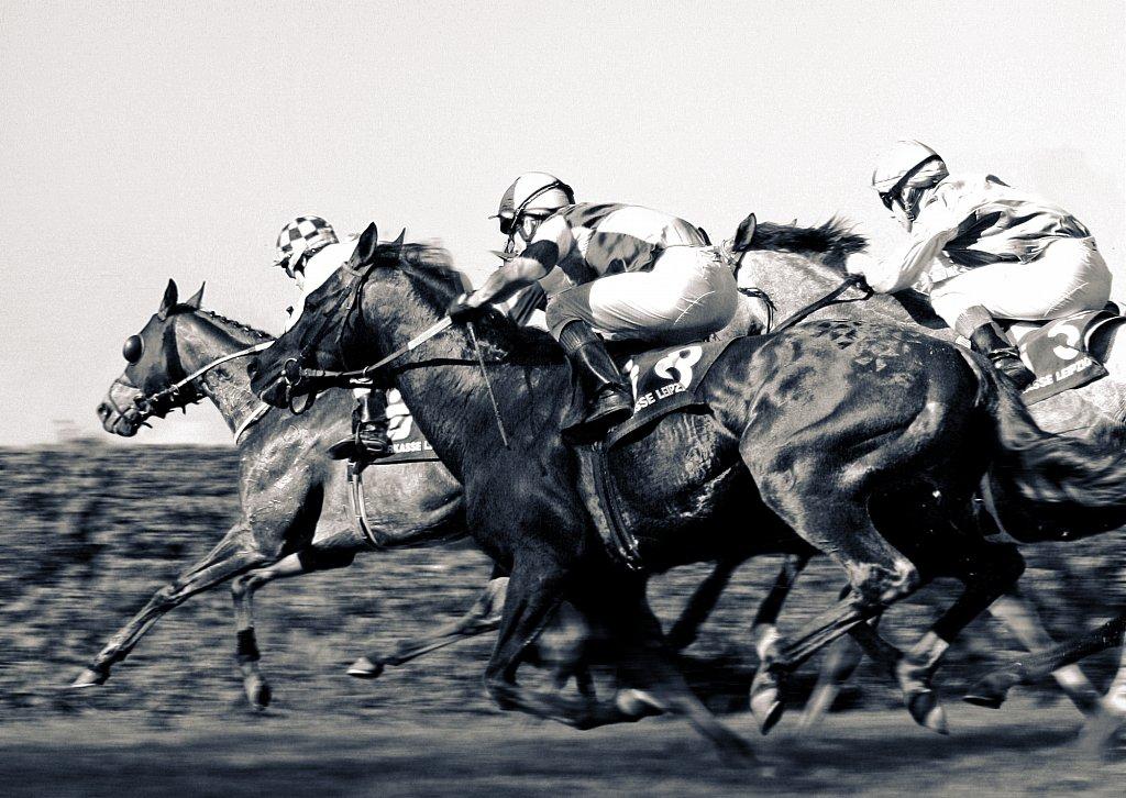pferderennen-1.jpg